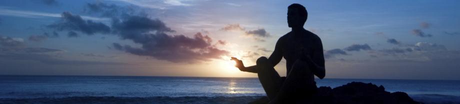 Harmonizing Body & Mind